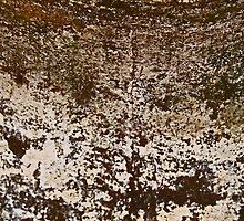 CORRODED (Damaged) by leethompson