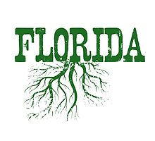 Florida Roots by surgedesigns