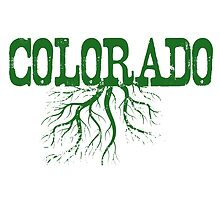 Colorado Roots by surgedesigns