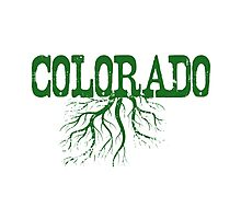 Colorado Roots Photographic Print