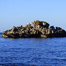 Morning on a Jagged Rock by kalaryder