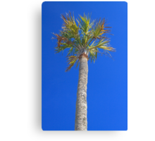Icons of the Beach Canvas Print