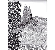 Parrot Zentangle Photographic Print