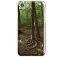 Tree Root Spiral iPhone Case/Skin
