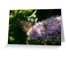 Glowing in the Shade Greeting Card