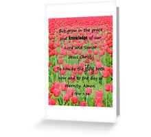 Red Tulip Fields - 2 Peter 3:18 Bible Verse Greeting Card