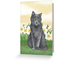 Django Amongst the Narcissus  Greeting Card
