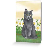 Django Amongst the Narcissus  Greeting Card