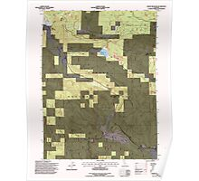 USGS TOPO Map California CA Childs Meadows 100177 1995 24000 geo Poster