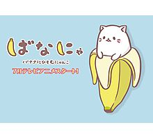 Bananya Photographic Print