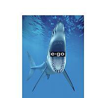 Shark Bite Photographic Print