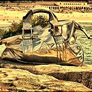 2016 Sculpture by the Sea 12 by andreisky