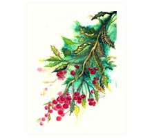 Christmas Holly Art Print