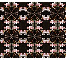 cherry blossom pattern 03 Photographic Print