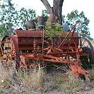 Old Rusty Farm Implement by Sandy1949