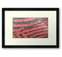 Red Zebra Fur Framed Print