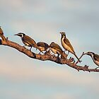 Hanging About by Allport Photography