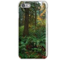 Rain Forest iPhone Case/Skin