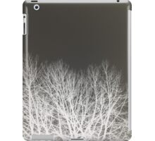 Solitude #2 iPad Case/Skin