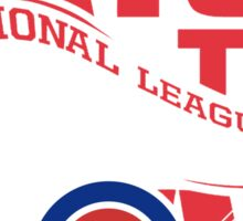 CHICAGO CUBS RAISE THE FLAG Sticker