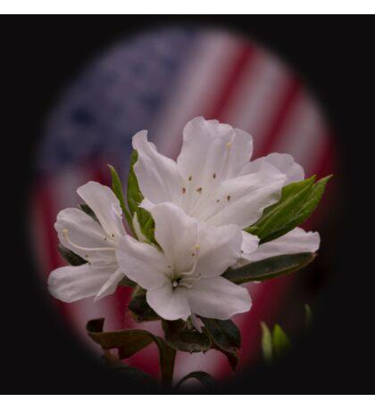 American Beauty  American Flag with White Azalea Flowers Sticker