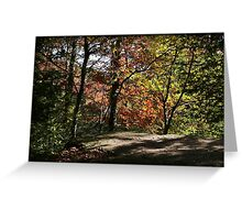 Highland Trail Autumn Afternoon Greeting Card