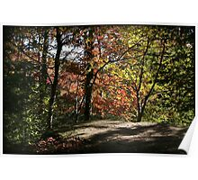Highland Trail Autumn Afternoon Poster