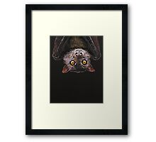Bat Framed Print