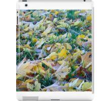 Frost on fallen leaves - closeup iPad Case/Skin