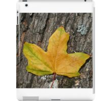 Yellow Maple Leaf  iPad Case/Skin
