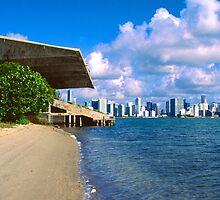 Postcard View of Miami by njordphoto