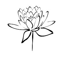Lotus Flower Calligraphy (Black) Photographic Print