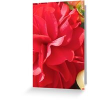 RED PETALS Greeting Card