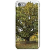 Oldest oaks in Lithuania iPhone Case/Skin