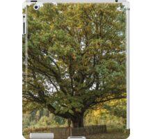 Oldest oaks in Lithuania iPad Case/Skin
