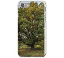 Oldest oaks iPhone Case/Skin