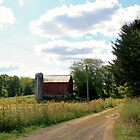 Country Road Farm - Western PA by Geno Rugh