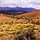 Landscapes of the Flinders Ranges - Photos by Georgie Sharp by Georgie Sharp