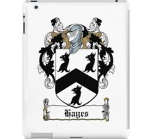 Hayes (Donegal) iPad Case/Skin