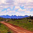 Flinders Ranges - Towards Wilpena Pound by Georgie Sharp
