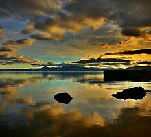 Golden Mirror of Nature by Barbara  Brown
