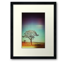 Light Tree Framed Print
