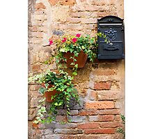 Flowers and Mail Photographic Print