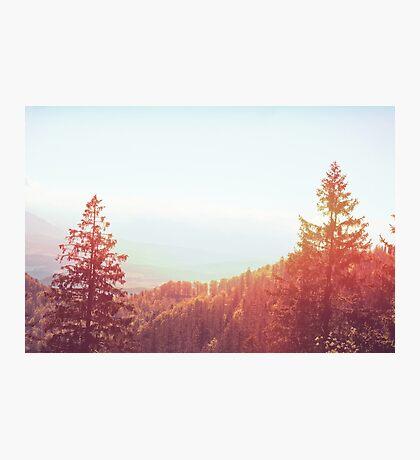 Landscape  06 Photographic Print