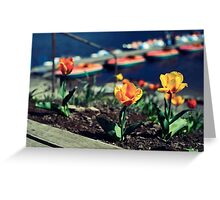 Bright Sunny Days Greeting Card