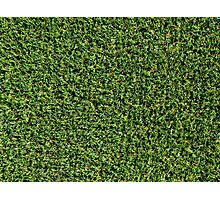 Artificial Green Grass Background Photographic Print