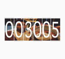 3005 Mileage: Bear by Chasingbart