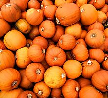 Pumpkins by Paul Finnegan