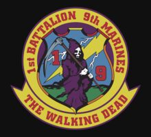 1st Battalion 9th by Accund