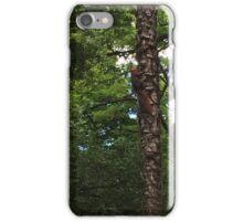 The Hidden Squirrel iPhone Case/Skin